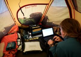 Stanford researcher Lauren Oakes working on a laptop in a tent
