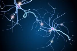 a digital illustration of neurons on a black background
