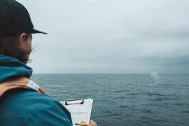 Photo of William Oestreich aboard the research vessel John Martin (Moss Landing Marine Laboratories) with the blow from a blue whale in the background.