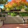 Campus steps with fall foliage